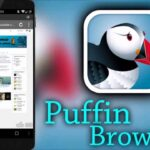 puffin alternative