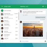 hangouts alternative